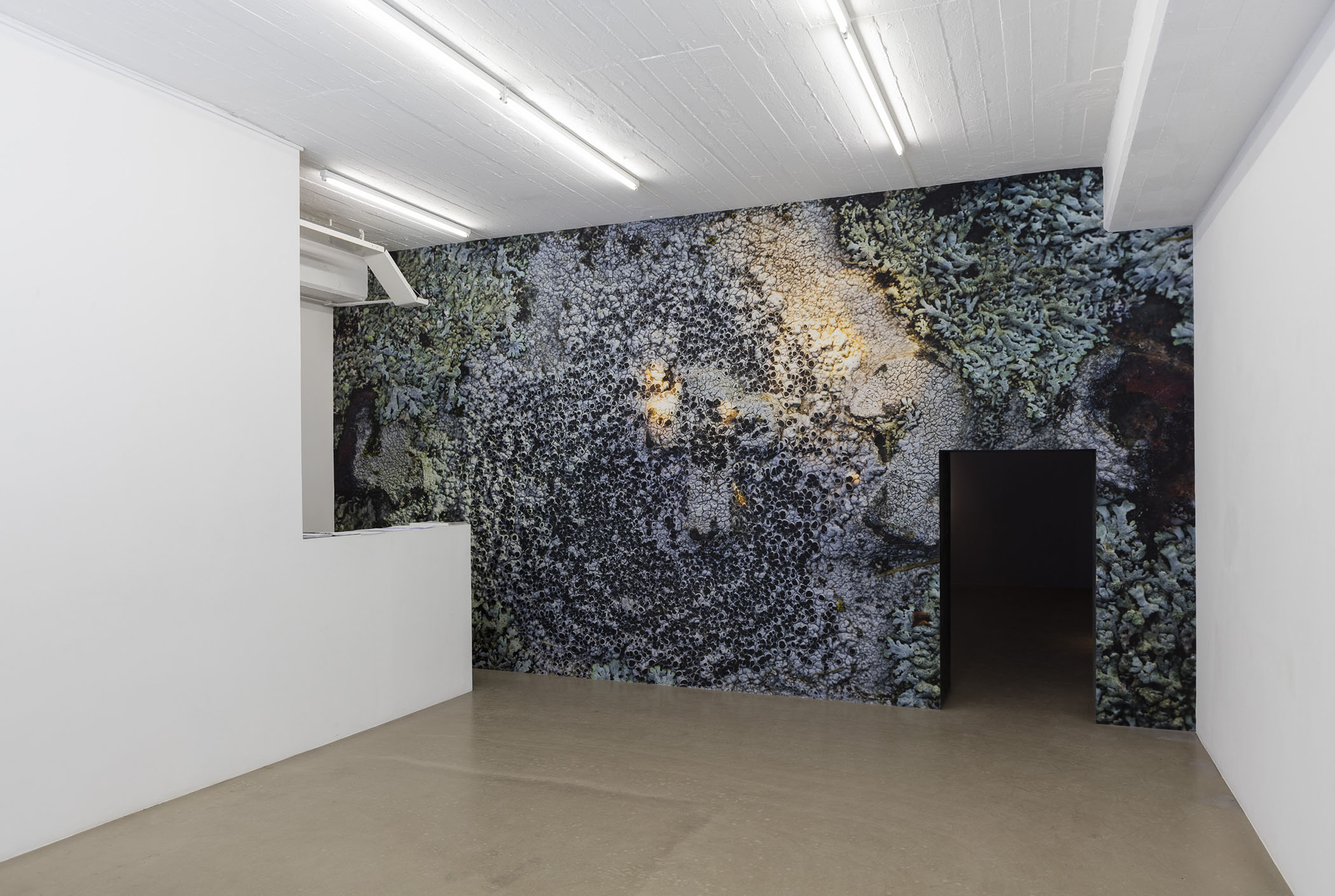 Oscar Furbacken - Conciliatory Gate, photo print on poly wall, 330x630 cm, 2017