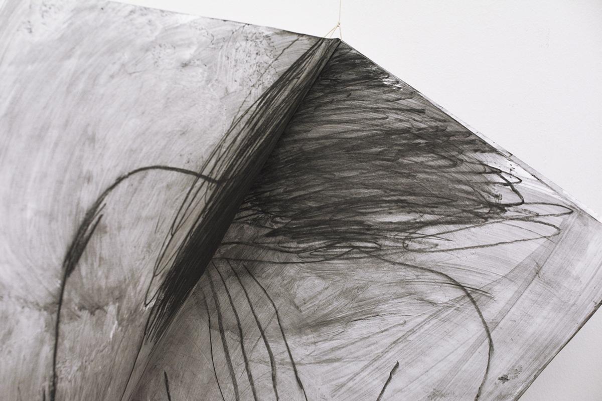Alina Vergnano - Detail: Internal Race, artist book, 2017