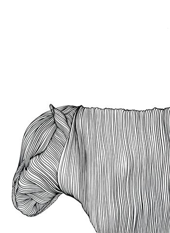 Ur-serien-Känslan-av-mörker-En-vit-shetlandsponny-tusch-på-papper-185x135cm-2009